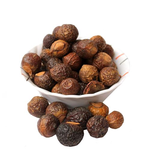 Reethe (Soap Nut)