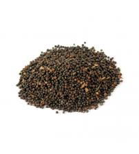 False Black Pepper (Bao Barrang)