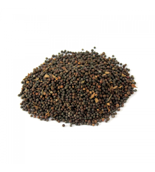 False Black Pepper (Bao Barrang)