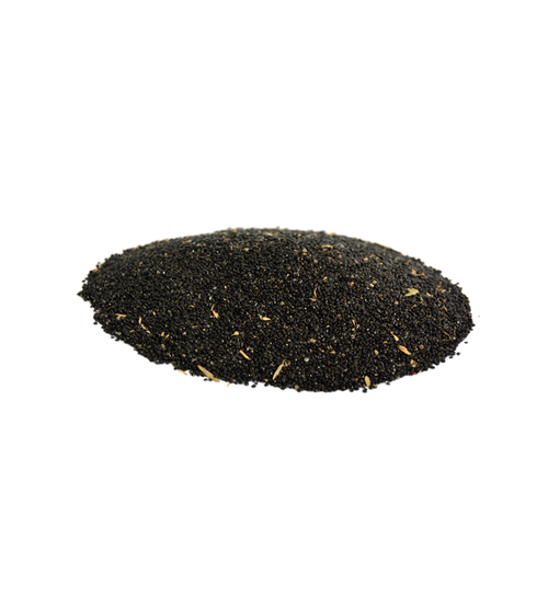 Sarwali (Plumed Cockscomb)