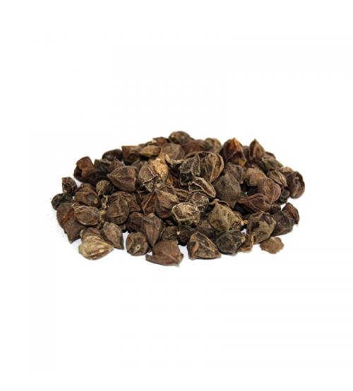 Dried Assyrian Plum (Sapistan Khushk)
