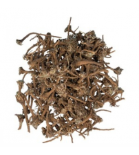 Akarkara (Pellitory Roots)